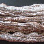 Skein of Common Brush Yarn