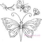 Butterflies and Dagonflies Set 3 c1940