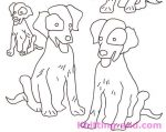 Dogs Hand Embroidery Design