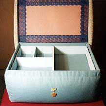 The insert tray