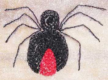 Chain stitch embroidered spider