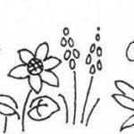 Tiny Flower Border c1940