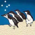 Little Penguins Sweater FAQ