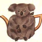 Koala Tea Cosy c1937