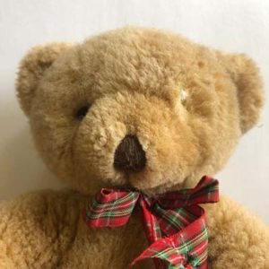 Teddy bear with a missing eye