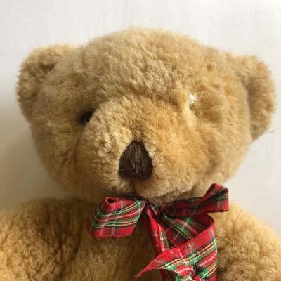Teddy bear with a missing eye